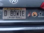 david-bowie-liscence-plate-300x225